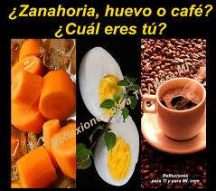 Zanahoria Huevo O Cafe Reflexion Keilah Radio Siempre Contigo Luego le dijo que cogiera el huevo, le sacara la cáscara, y lo tocara también. zanahoria huevo o cafe reflexion